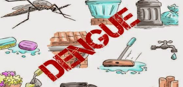 Dengue Cheated Winter this Time