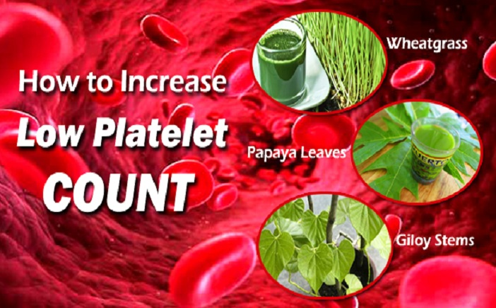 Increase-a-Low-Platelet-Count-meditoall